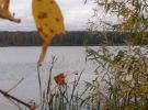 Осенний семинар