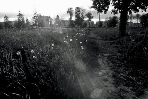 Фото: Андрей Шестаков
