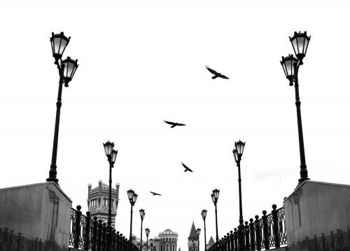 """Полет"". Фото: Анна Романова"