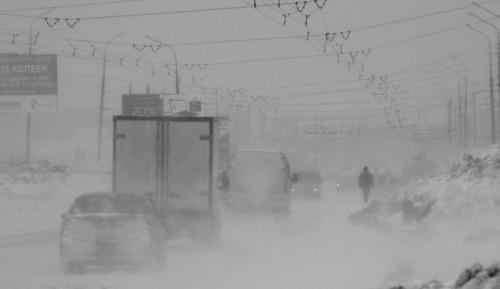 Фото: Дмитрий Зорин