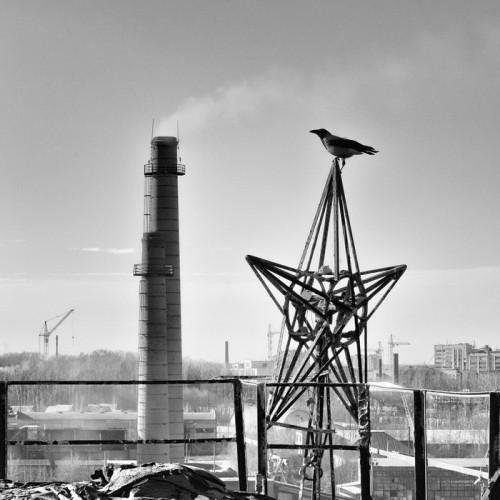 Фото: Антон Чуриков